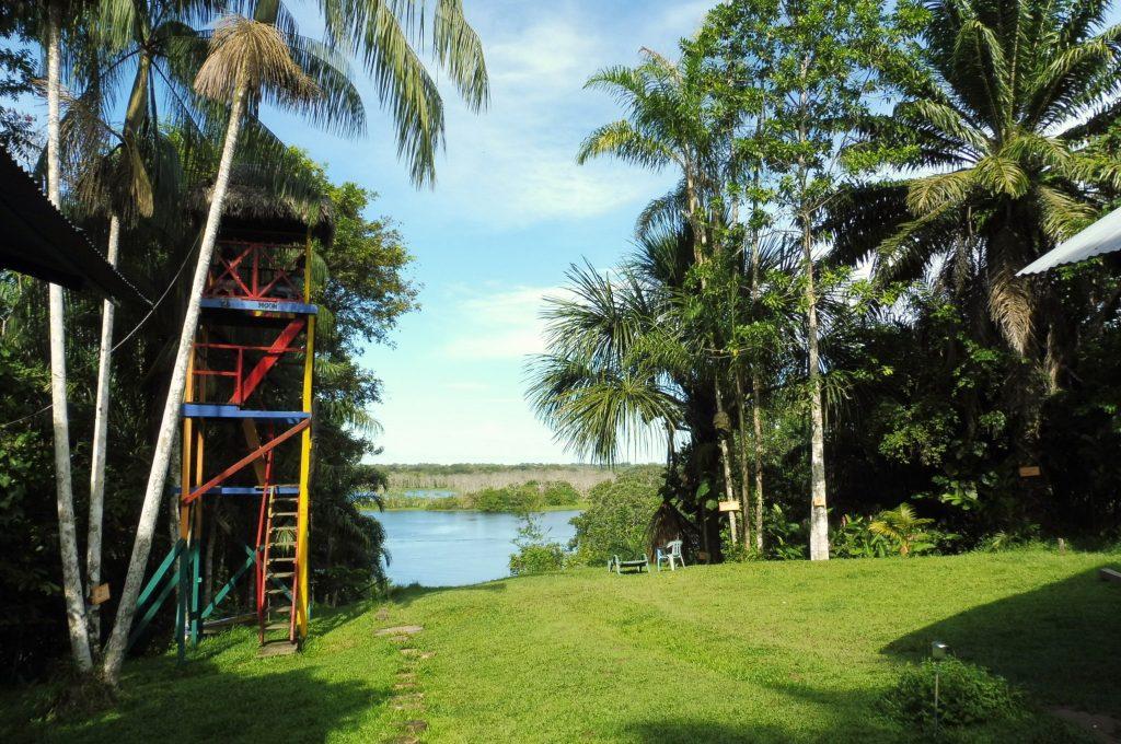 Colombia Amazonas Alto del Aguila