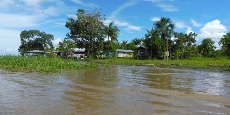 Welcome to the Jungle: The Amazonas, one of my biggest adventures