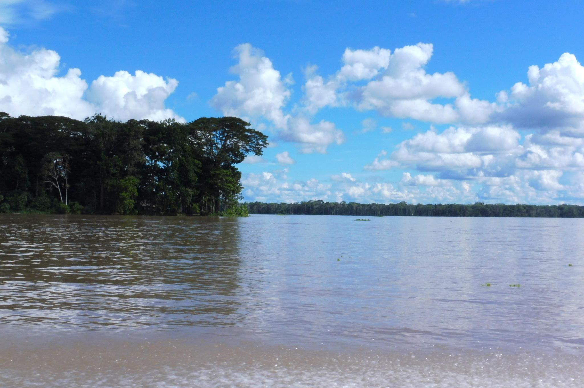Colombia Amazonas
