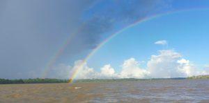 Amazonas Rainbow
