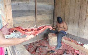 Amazonas Town