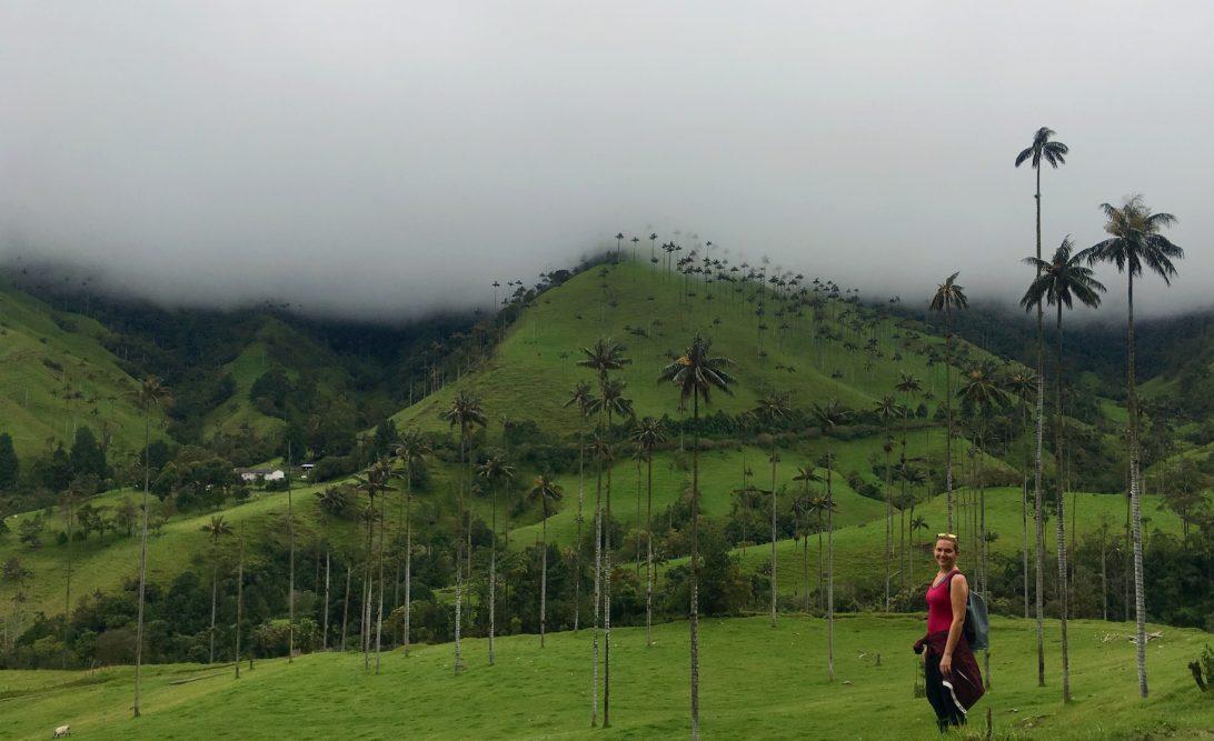 Valle de Cocora Salento Colombia