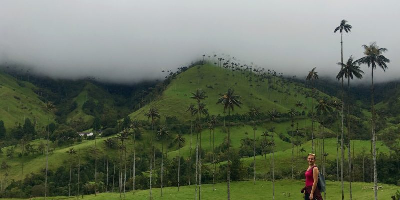 Salento: Colombias Coffee Region & the World's Highest Palm Trees