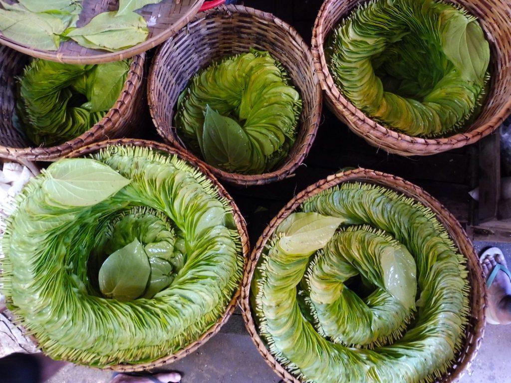 Myanmar. Betel Nuts